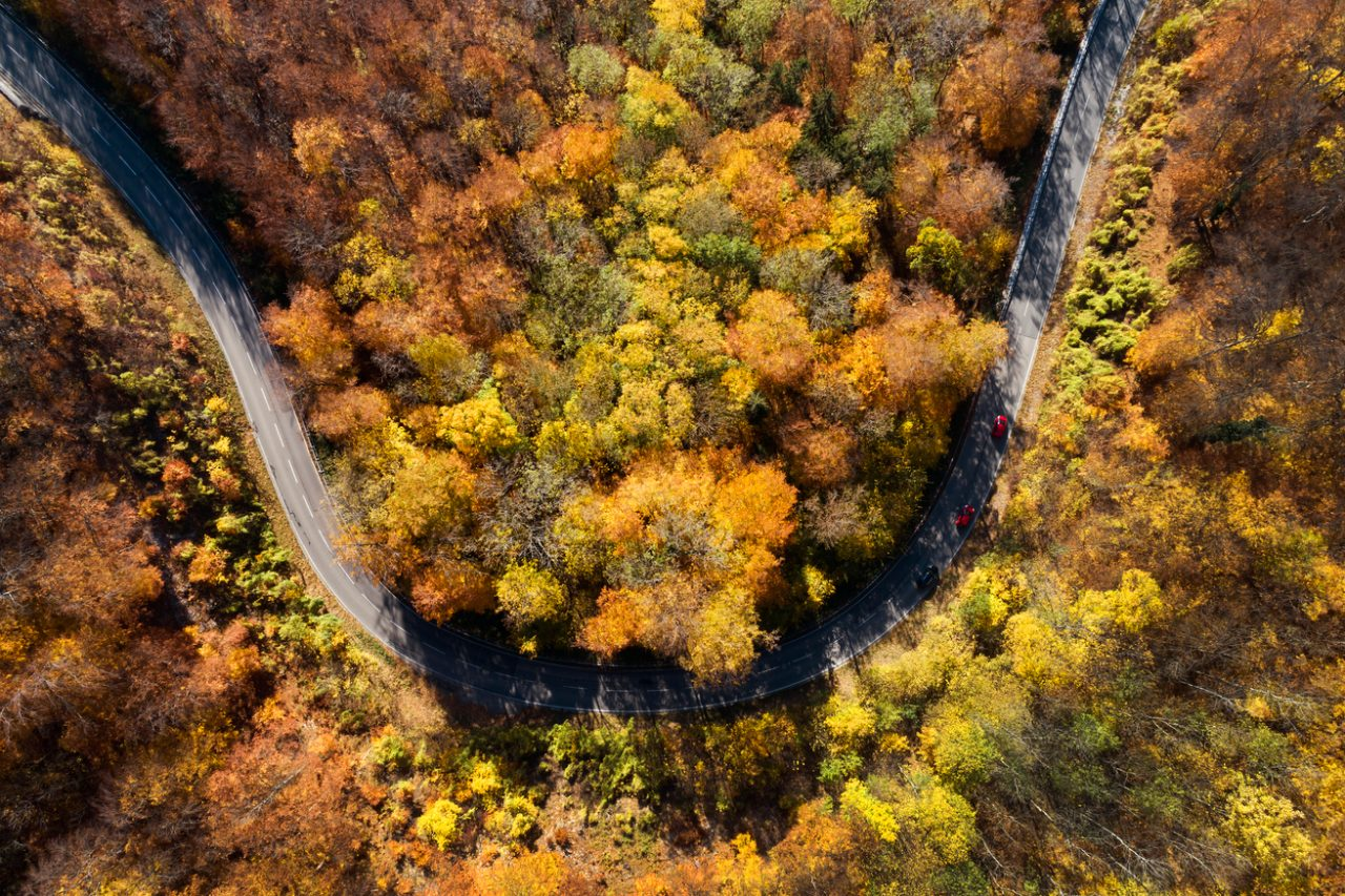 Sharp mountain road curve in colorful autumn forest, aerial view, Bavaria, Germany.